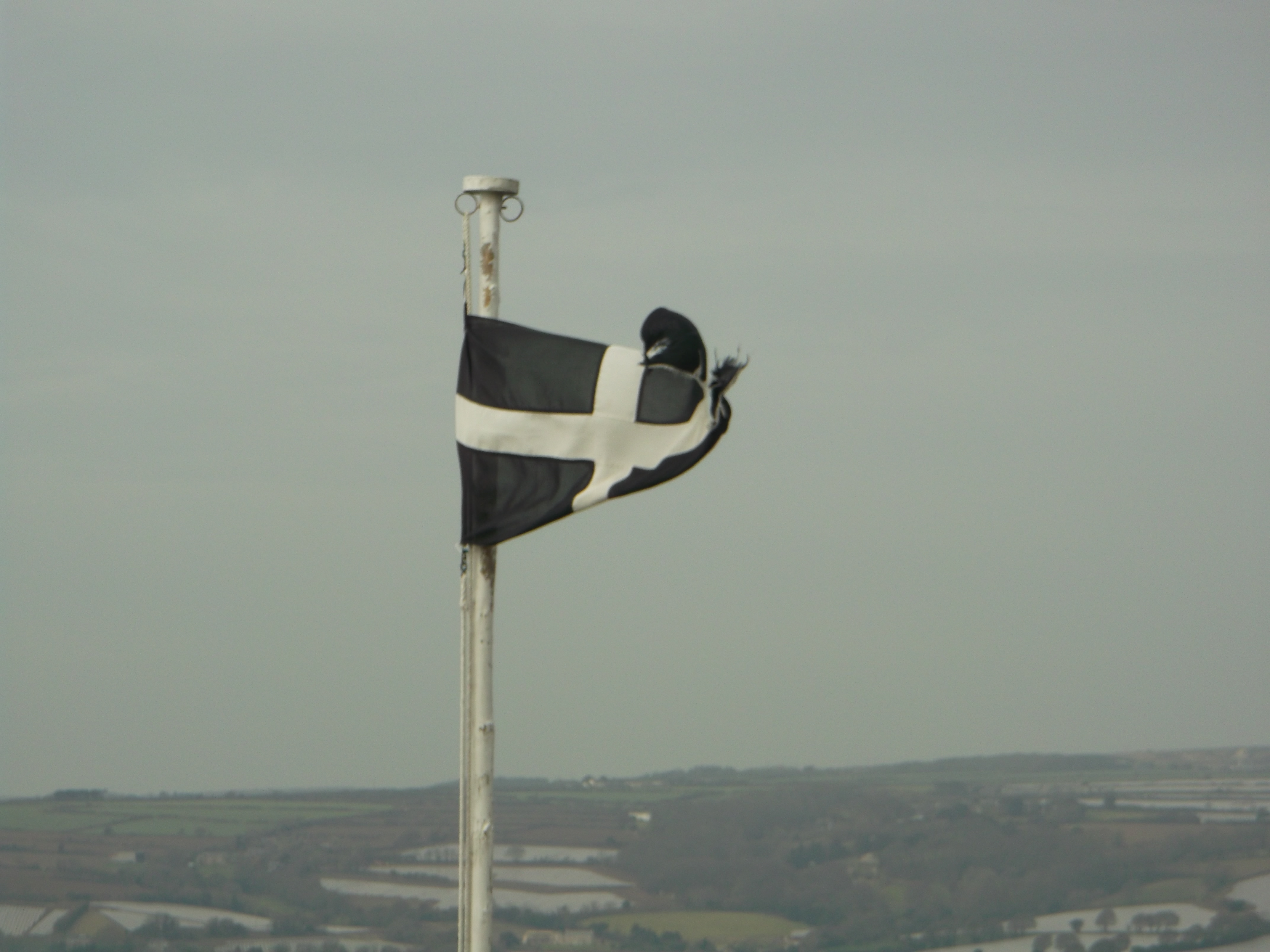 St Piran's Day - St Michael's Mount
