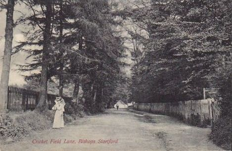 Bishops Stortford - Cricket Field Lane